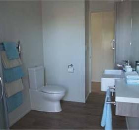 living toilet.jpg